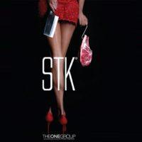 STK_brochure_V2